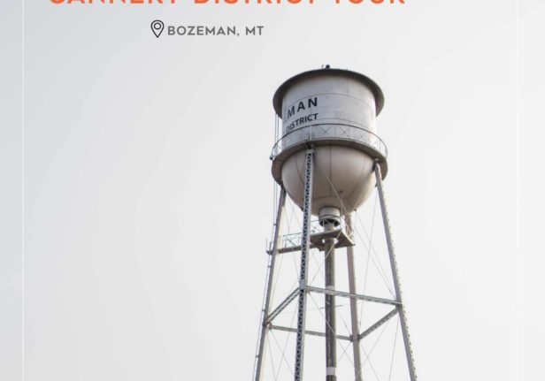 Engine 8: Cannery District Tour
